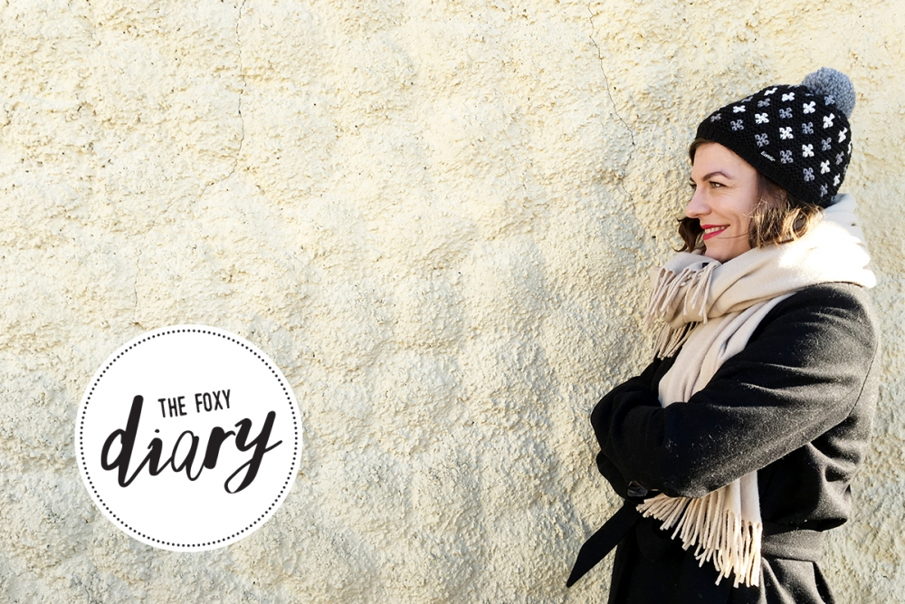 Foxycheeks Wochen Tagebuch Mini Diary / 2015