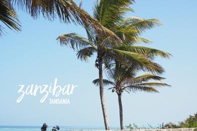 Hello from Zanzibar!