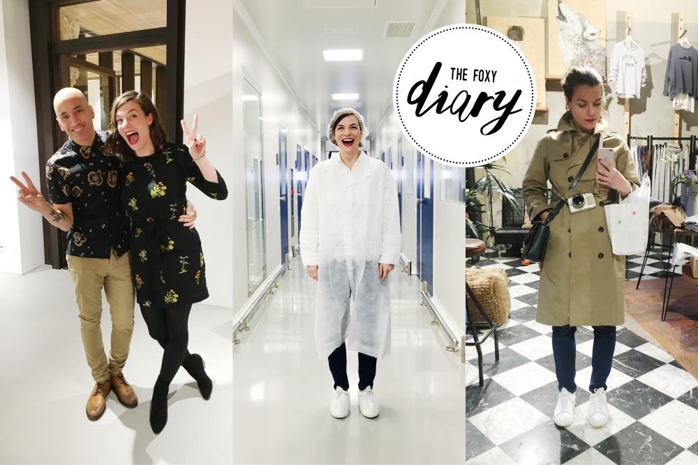 Foxycheeks Beautyblog Diary