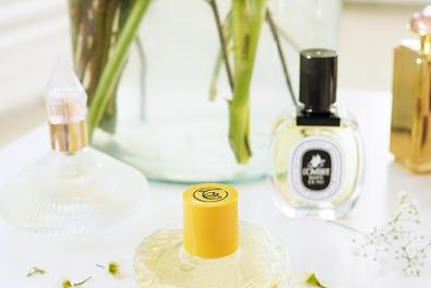 7 Parfüms, die mich gerade um den Verstand bringen